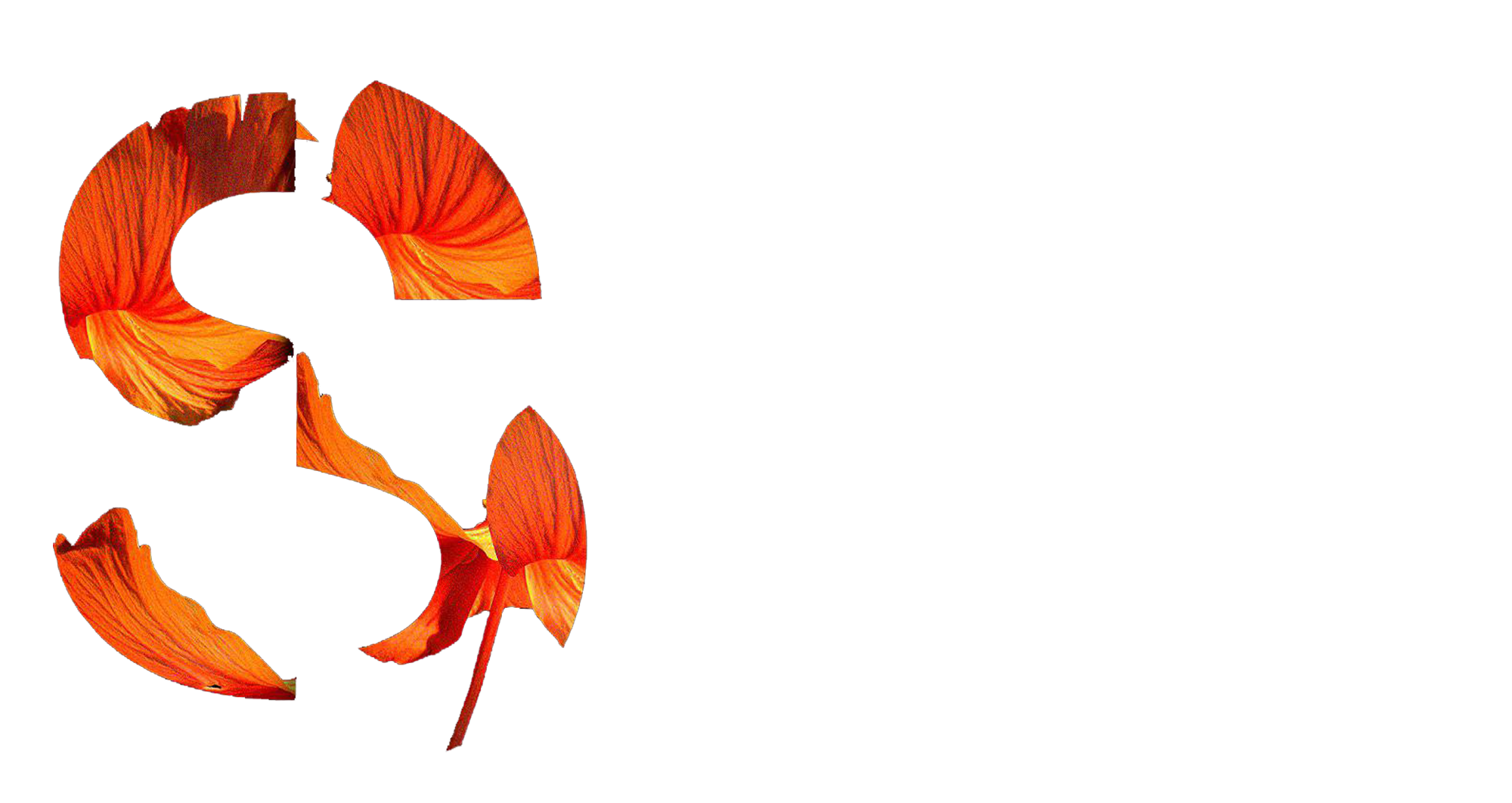SVG Secret Shop